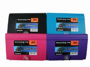 Expandable Folder-13 Pockets (DP00353) pictures & photos
