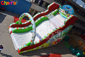 China Inflatable Dry Slide for Kids Chl446 pictures & photos