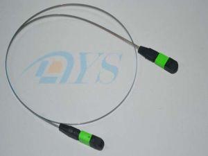 12 Core Ribbon Fiber MPO to MPO Patch Cord pictures & photos