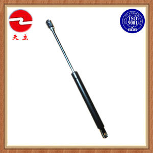Producer of Gas Spring Strut pictures & photos