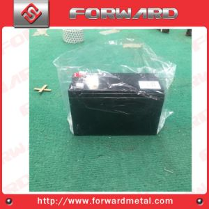 2 Volt Edrenaline Rechargeable Tab Style Battery pictures & photos