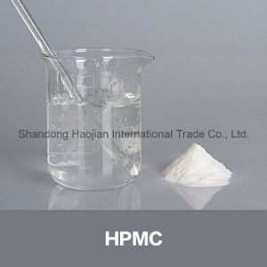 Hydroxy Propyl Methyl Cellulose Pre-Mixed Dry Mortar Additive HPMC pictures & photos