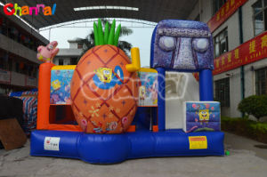 Inflatable Bouncer Combo/Inflatable Bouncer with Slide Chb422 pictures & photos