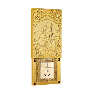 24k Gold Plated with Sliding Cover Brass Wall Socket pictures & photos