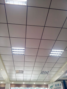 Lay in Ceiling pictures & photos
