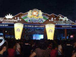 10x30m Steel Frame Festival Tent