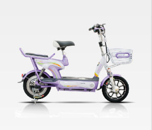 Alloy Aluminum 350W New Model E-Bicycle