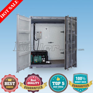 Containerized Cold Room Walk in Freezer pictures & photos
