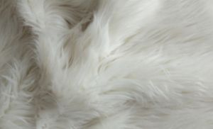 Curly-Fur Eshp-560-2 pictures & photos