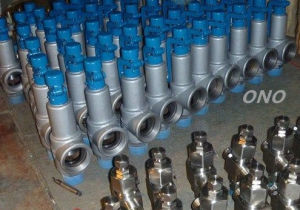 Stainless Steel Thread Type Safety Valve pictures & photos