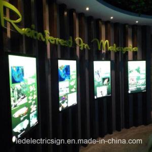 Aquarium Magnetic Frame Slim Light Box 1530 pictures & photos