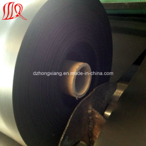 30mil 40mil 60mil 80mil HDPE Geomembrane Price pictures & photos