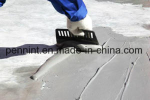 Js Polymer Cement Waterproofing Coating for Pools Basements pictures & photos