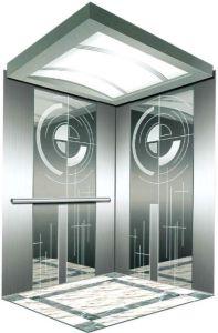 Vvvf Drive Gearless Motor Home Villa Elevator (RLS-110) pictures & photos