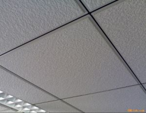 Fut Ceiling Grids with Black Line (32*24mm)