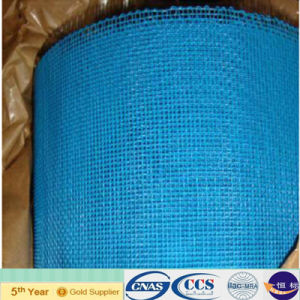 Anping Xinao PVC Coated Fiberglass Cloth (XA-WS8) pictures & photos