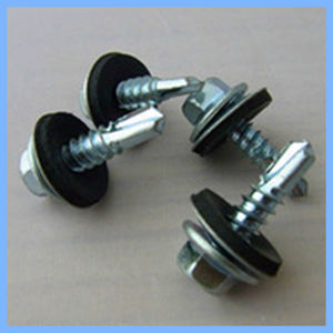 Hexangular Head Self Drilling Screw with Rubber Washer pictures & photos
