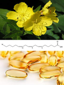 Pure and Potent Supplement Premium Evening Primrose Oil CAS: 65546-85-2 pictures & photos