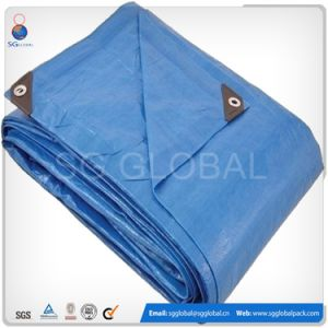 Heavy Duty Blue Plastic Woven 10X10 Tarp pictures & photos