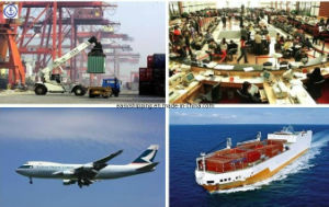 Consolidate Lowest Logistics Freight Fee From China to Dubai Shipping pictures & photos