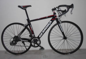 700c 14 Speed Alloy Sport Bicycle, Racing Bike, Road Bike pictures & photos