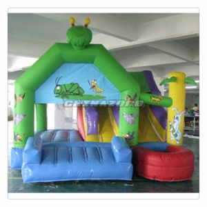 Popular Type Insect Theme Inflatable Bouncer Combo Jumping Castle pictures & photos