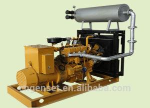20kw 25kVA Biomass Gas, Biogas, Natual Gas, Marsh Gas, Landfill Gas Engine Generator Set/Genset pictures & photos