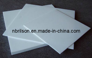 PTFE Sheet (RS-5020) pictures & photos