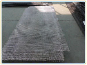 Electro/Hot Dipped Galvanized Crimped Wire Mesh pictures & photos