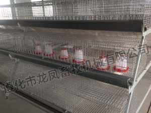 Hot Sale Galvanized Chicken Cage Certificate of ISO9001 pictures & photos