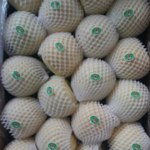 Good Quality Carton Packing Fresh Golden Apple pictures & photos