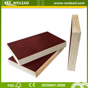 Film Faced Plywood Manufacturer for Shuttering (w15489)