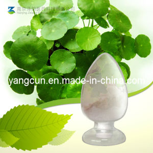 Natural Centella Asiatica Extract Asiaticoside 40% pictures & photos