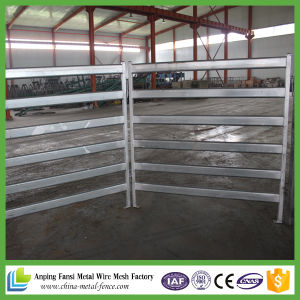 Top Quality Metal Tube Horse Panel pictures & photos
