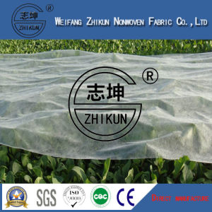 Agriculture Nonwoven Fabrics for Ground