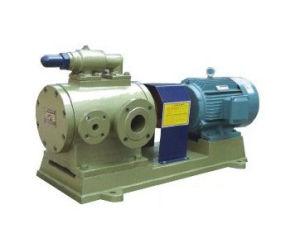 Multi-Usage Double Screw Pump pictures & photos