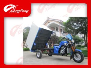 Container Box Tricycle, Wuxi Factory Tricycle, 150cc Three Wheel Motorcycle pictures & photos