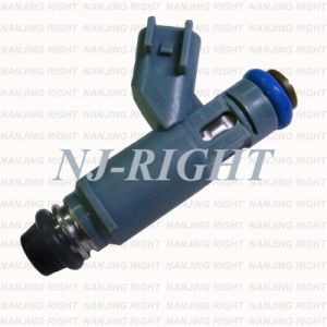 Denso Fuel Injector (3W4E-A7A) for Lincoln pictures & photos
