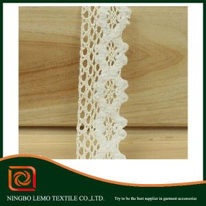 100% Cotton Mesh Embroidery Lace pictures & photos
