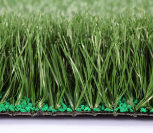 Artificial Grass, Sports Floor, Football Grass (PD/SM55H1) pictures & photos