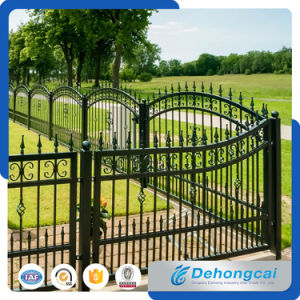 Podwer Ornamental Commercial Wrought Iron Security Fencings pictures & photos