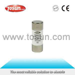 Cylindrical Fuse Link with Ceramic Material pictures & photos