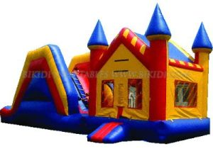 Inflatable Castle, Combo Bouncer and Slider (B3029) pictures & photos