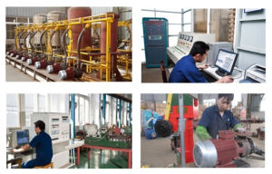 Water Ring Vacuum Pump 2sk pictures & photos