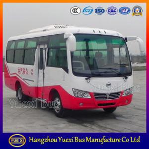 High Quality Light Bus