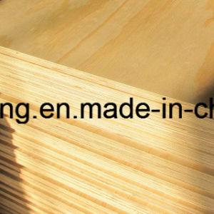 BB/CC Okoume, Bintangor, Birch F/B, Poplar, Hardwood, Combi Core Commercial Plywood