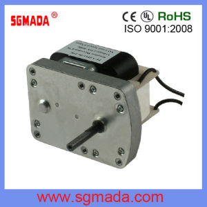 AC Gear Motor (RF-YJ61) pictures & photos