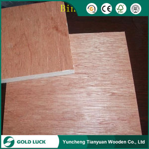 Bintangor/Okoume/Teak/Birch Faced Commercial Plywood for Furniture pictures & photos