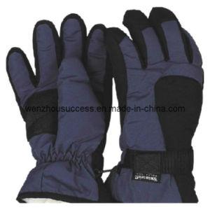 Ski-Gloves (SH12-2G033) pictures & photos