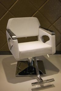 White Salon Barber Chair of Salon Furniture (MY-007-79) pictures & photos